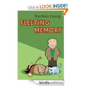 Fleeting Memory by Sherban Young